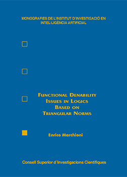 Functional Definability Issues in Logics Based on Triangular Norms