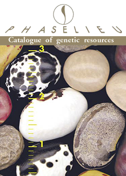 Catalogue of bean genetic resources